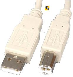 USB Cable White A male to Type B male Connectors printers ext. H